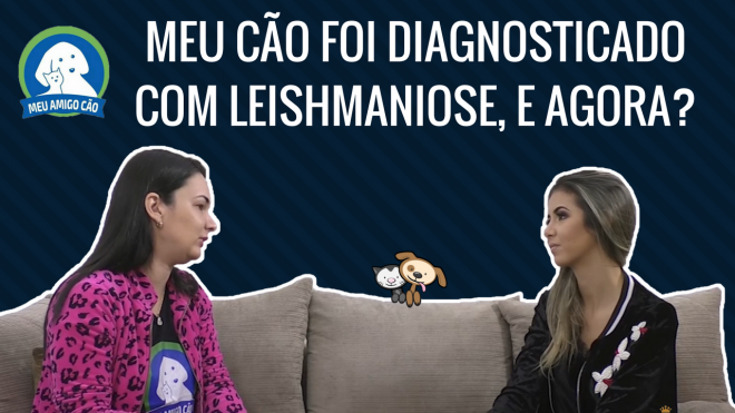 Meu Cão Foi Diagnosticado com Leishmaniose Visceral, e Agora?